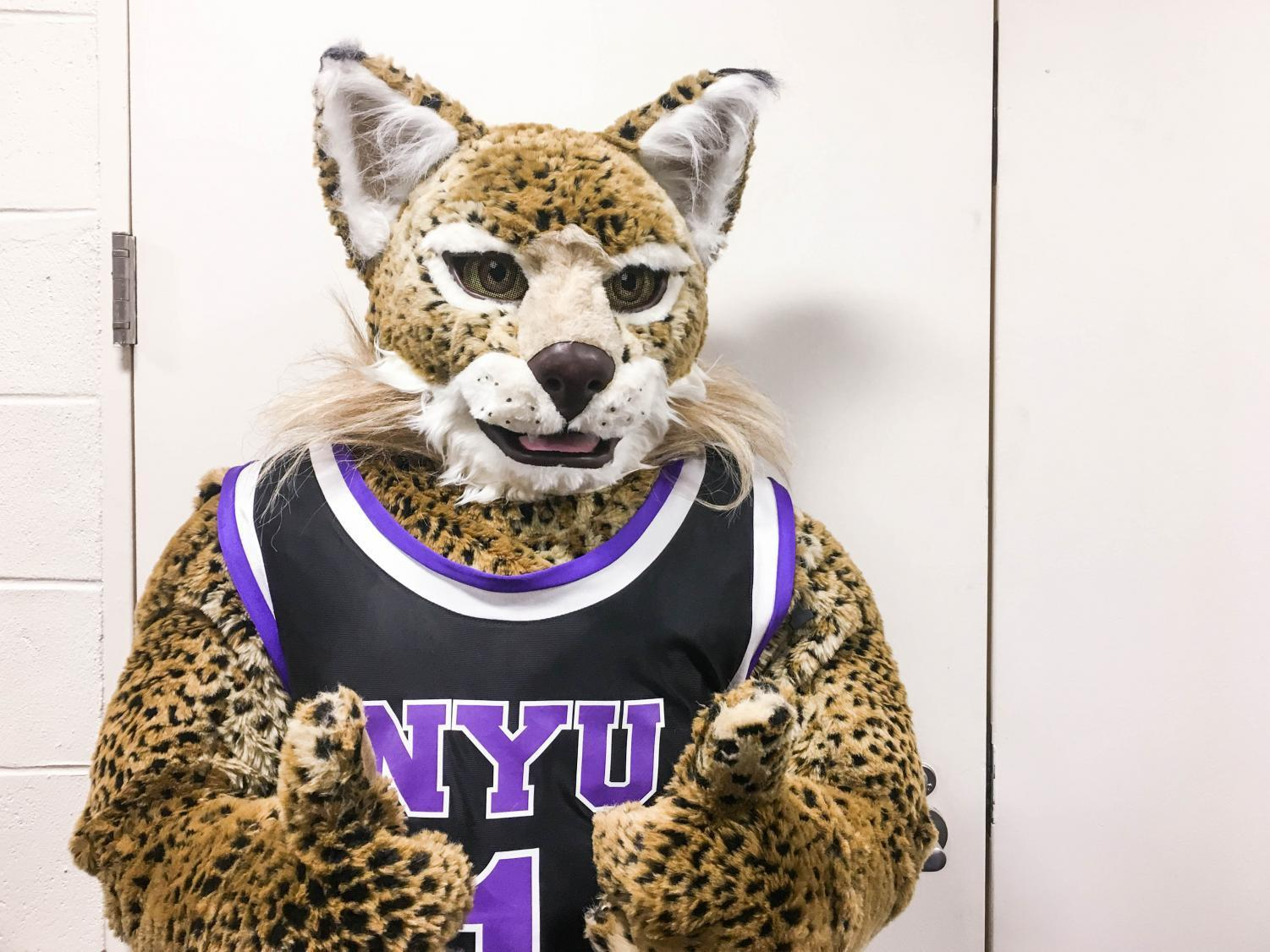 Big Things to Come From the Bobcat | Washington Square News
